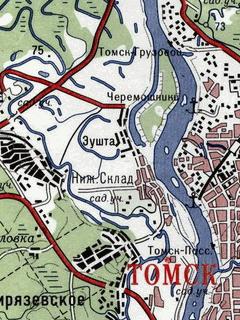 Garmin Карта Томской Области